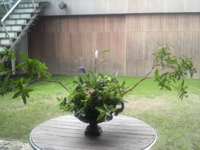 6月花あしらい